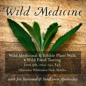 WildMedicine-Charmlee